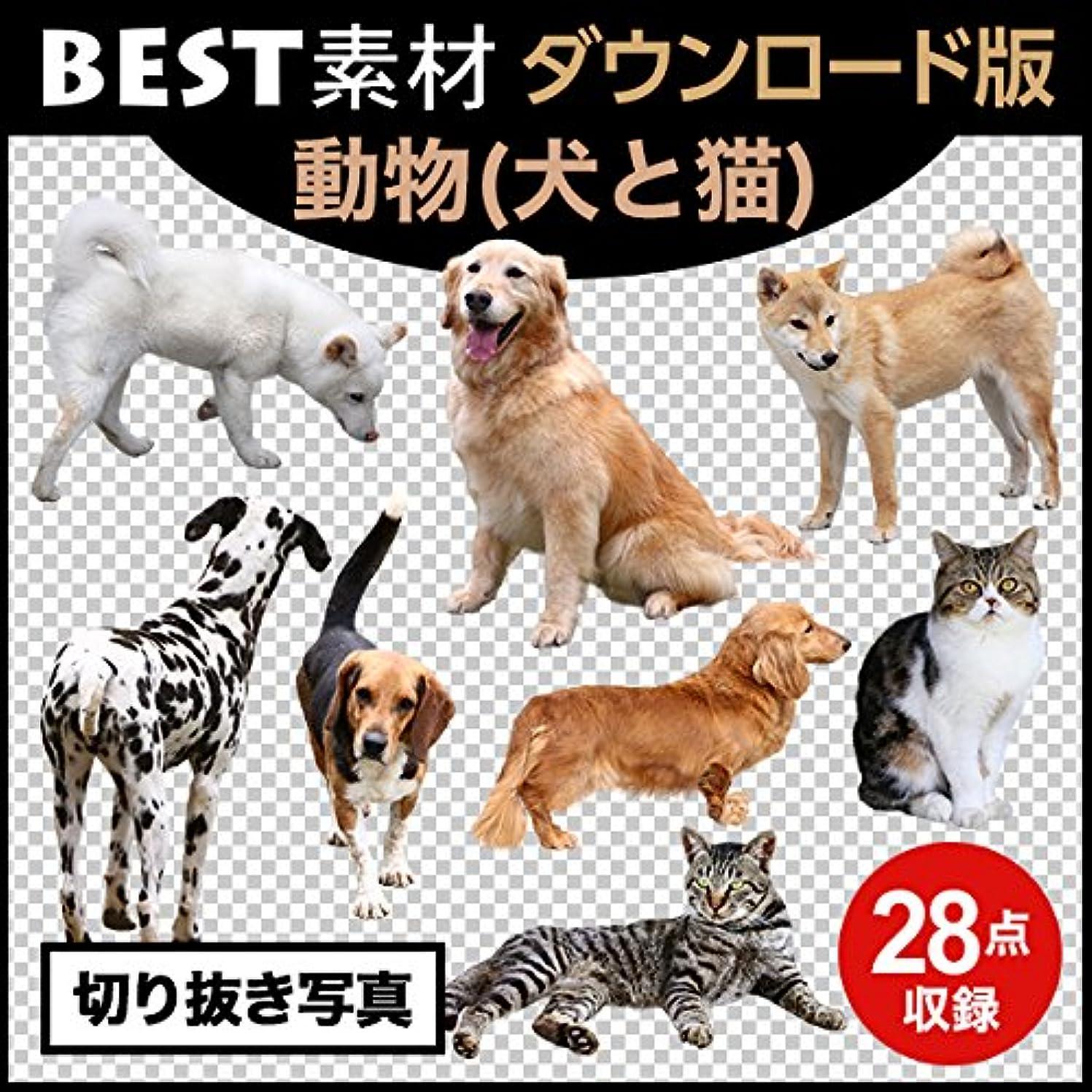 同化残高システム【BEST素材】切り抜き写真_動物(犬と猫) [ダウンロード]