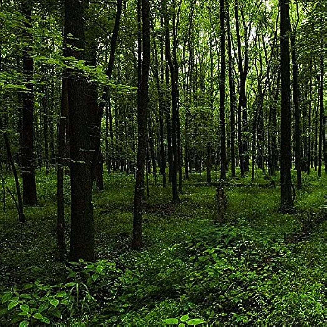 直立ピストンにんじんアロマフレグランスオイル ウッドランドウォーク(Woodland Walk)
