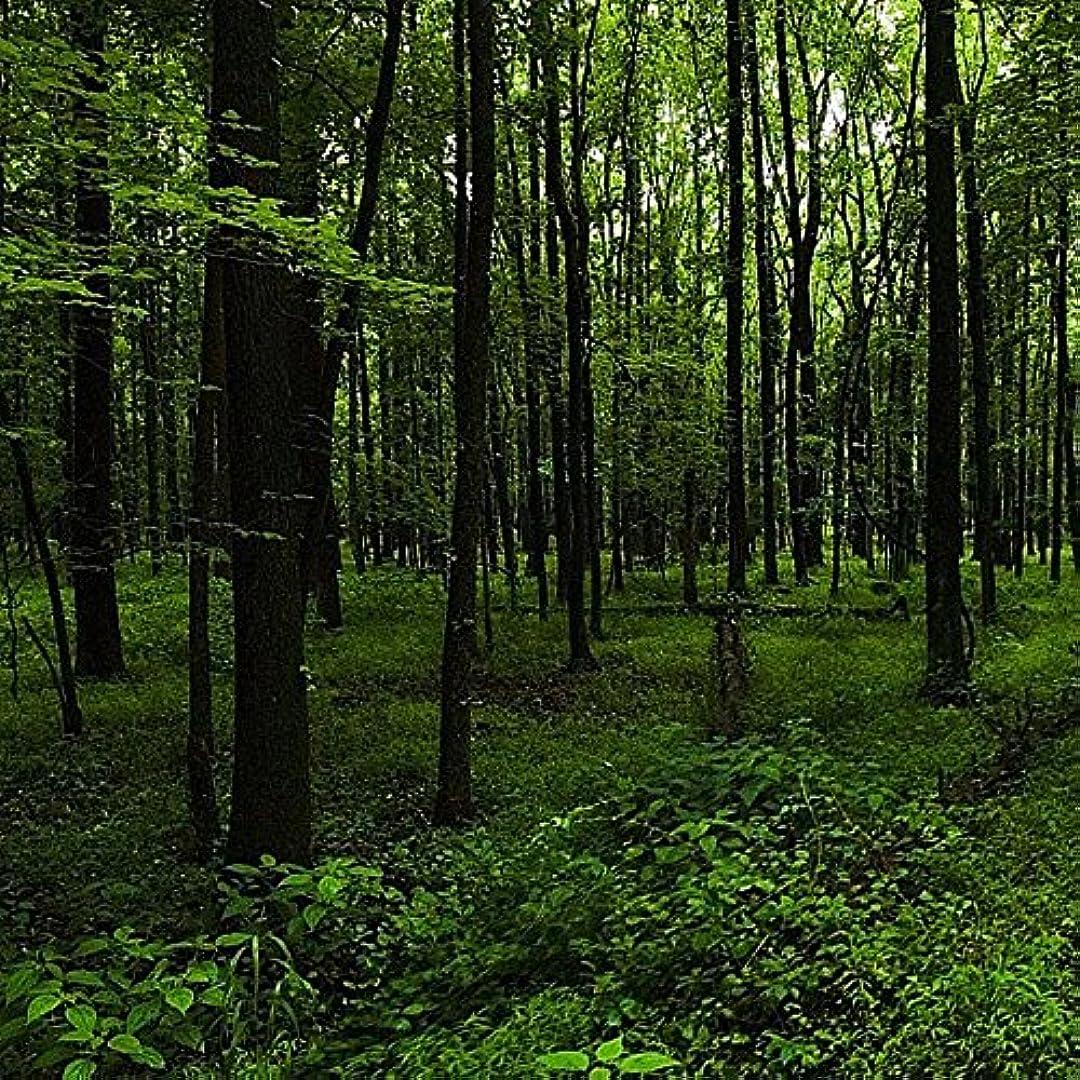 認知ポインタ写真を撮るアロマフレグランスオイル ウッドランドウォーク(Woodland Walk)