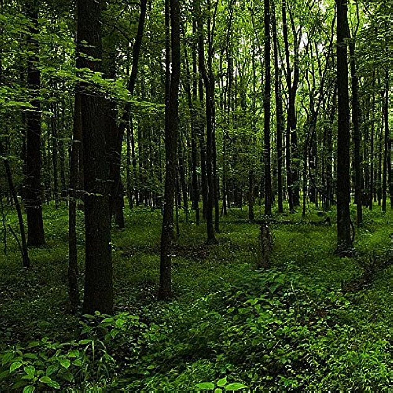 道徳の取り囲むフィットアロマフレグランスオイル ウッドランドウォーク(Woodland Walk)