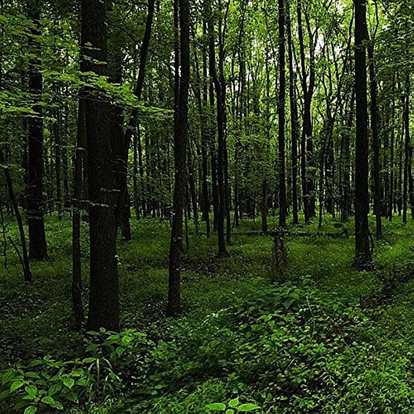 ささやきモチーフ思い出させるアロマフレグランスオイル ウッドランドウォーク(Woodland Walk)
