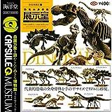 カプセルQミュージアム 恐竜発掘記6 恐竜全身骨格展示室 [全10種セット(フルコンプ)]