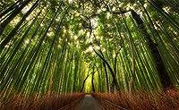 leowefowaビニール5x 91センチフォレスト竹Backdrop Green Leaves Dry GrassパスNatureアウトドア旅行写真背景子供ベビーフォトスタジオ小道具