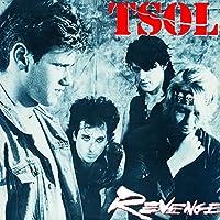 Revenge [12 inch Analog]