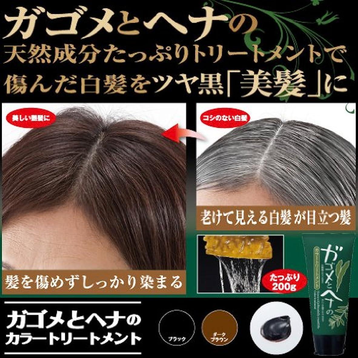 フルーツ野菜しないでください特許髪を傷めず白髪1本1本しっかり色づけ『ガゴメとヘナの カラートリートメント』(ブラック)