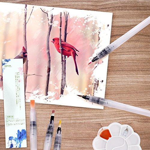 DigHealthアーティストが描画用 フィス水筆ペン ウオーターブラシ 水彩画用筆6本セット 水彩パレット付き