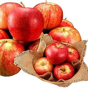 りんご 青森黒石から産地直送 佐々木さんの農家自家用りんご 3kg 訳あり わけあり ワケアリ 訳アリ※10月中旬出荷予定