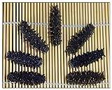 【北海道産】AB級品乾燥なまこ 1KG入 SMサイズ(3~8g) 天然ナマコ