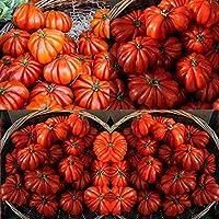 PLAT会社-SEEDS Megei-家宝のトマト種子オーガニック - 植栽のための非GMO種子の8つの品種