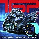 Tribal Evolution(トライバル・エヴォリューション)