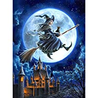 (30 40cm/11.81 15.75inch, Witch With Castle) - Adarl 5D DIY Diamond Painting Rhinestone Pictures Of Crystals Embroidery Kits Arts, Crafts & Sewing Cross Stitch (Witch With Castle)