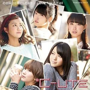 心の叫びを歌にしてみた/Love take it all(初回生産限定盤A)(DVD付)