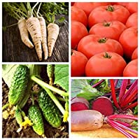 Vegetables That detoxify The Body - Set of Seeds of 4 Vegetable Plant Species - 4 Seed Packages