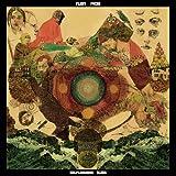 ヘルプレスネス・ブルーズ [日本盤のみ歌詞/対訳、解説付] / フリート・フォクシーズ (CD - 2011)