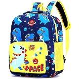 Cute Kindergarten Toddler Backpack Child Book Bag Cartoon School Bags for Kid Children Elementary Student Bookbags (Blue)