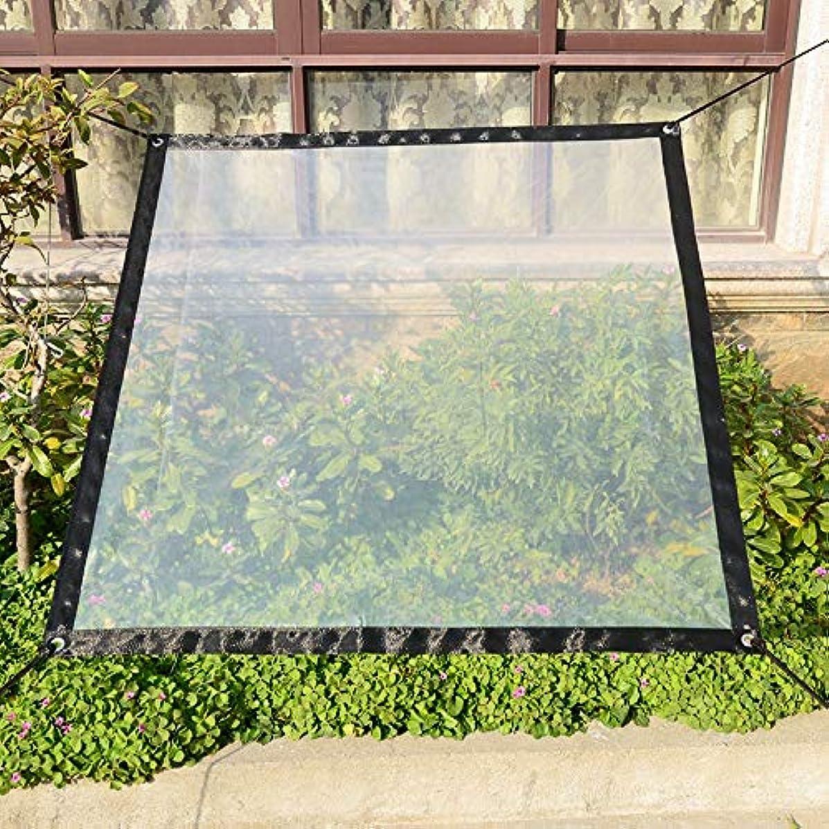 血色の良いルートイサカ園芸のバルコニーの絶縁材のための透明で厚いプラスチックフィルムの凍結防止の防雨性の鳥の防止の日よけの風防ガラスの布