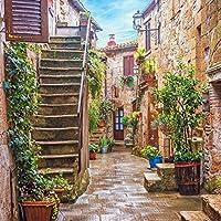Gardenia 8 x 8フィート イタリア オールドタウン 小型 狭い アリー 街路 風景 ヨーロッパの建物 緑のつる 絵画クロス カスタマイズ写真背景 デジタルプリント 背景 写真スタジオ小道具