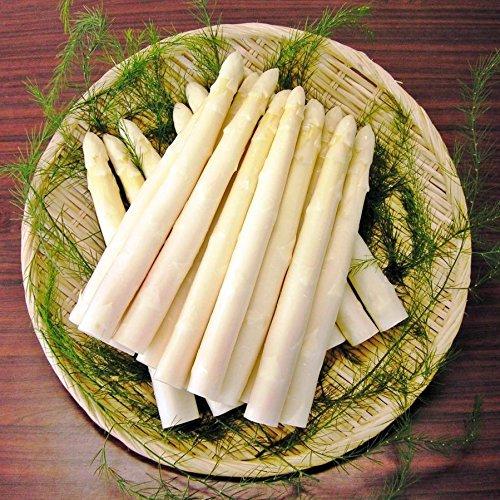 会津産 生鮮ホワイトアスパラガス1kg箱 (会津産ホワイトアスパラ(2L)1kg)