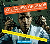 90 Degrees of Shade Pt.1: Hot [12 inch Analog]