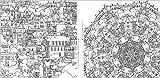 ファンタスティック・シティ(Fantastic Cities): めくるめく街のカラーリングブック (マルチメディア) 画像