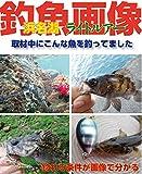 浜名湖ライトルアー 釣魚画像 (ハローフィッシング ムックシリーズ)