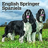 品質English Springer Spaniel 2019 calendar- Best Holiday Gift ideas- Mom, Dad, sister祖父母、Brother、おばあちゃん、Gay Planner、カレンダーPlanner、カレンダー壁、ポケット、カレンダー、月。
