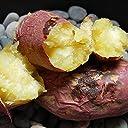 紅はるか 熊本県産 甘くて美味しい 紅蜜芋 2.0kg 安納芋に匹敵 芋 いも イモ さつまいも