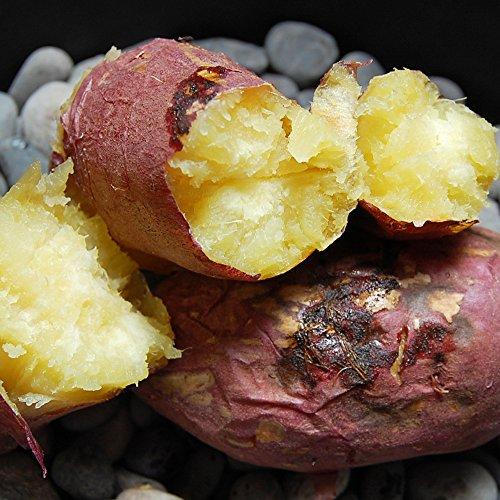 紅はるか 熊本県産 甘くて美味しい 紅蜜芋 10kg 安納芋に匹敵 芋 いも イモ さつまいも