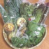 【産地直送】自然栽培 元氣野菜セットS(農薬・肥料不使用/約4~8品目)