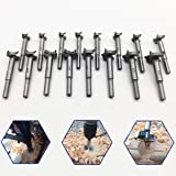 Forstner Drill Bit Sets,16 Pcs Tungsten High Speed Steel Wood Working Hole Cutter Titanium Coated Wood Boring Hole Drilling S