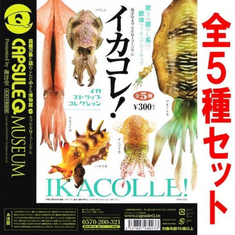 海洋堂カプセルQミュージアム イカコレ!イカストラップコレクション 【全5種セット(フルコンプ)】