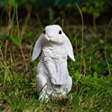 Danmu 1Pc of Polyresin Standing Rabbit Statue Garden Statues, Outdoor Statues, Garden Ornaments, Yard Statue for Home and Gar