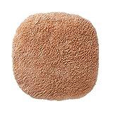 蓄熱式湯たんぽ ブラウン EWT-1543BR