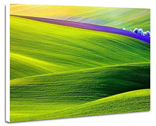 緑色の山の斜面、田野 - 自然 風景 壁掛け式の装飾画 印刷...