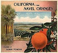 California Navel Orangesブランド–Pomona、カリフォルニア–Citrusクレートラベル 24 x 36 Giclee Print LANT-57252-24x36