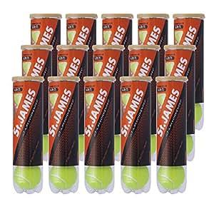 DUNLOP(ダンロップ) 硬式 テニス ボール セント・ジェームス プレッシャーライズド ボール 4個入りボトル 15缶(60球) セット STJAMESI15