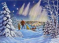 14フルカラー内側クリスマスカードと封筒、Northern Lights