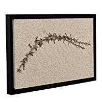 ArtWall Cora Niele's Beach Find II Gallery Wrapped Floater Framed Canvas 12 by 18 [並行輸入品]