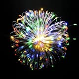 TOPLIFE イルミネーションライト 10メートル 100 LED電球 電池式 LED ライト リモコン 付き 室外 装飾 結婚式 パーティー 飾り ライト 正月 クリスマス 飾り バレンタインデー 電飾 (レインボー4色)