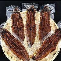 【おさかな問屋 魚奏】大サイズうなぎ 蒲焼 ウナギ 鰻 中国産 200g×5本