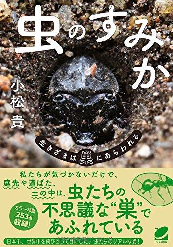 虫のすみか―生きざまは巣にあらわれる (BERET SCIENCE)の詳細を見る