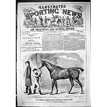 1863 有名な競馬馬のワシの兄弟の広がりワシのスポーツの馬