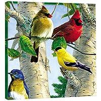 tree-free Greetings EcoArtホーム装飾壁プラーク、11.25X 11.25インチ、お気に入りSongbirdsテーマ鳥アート(85507)