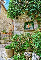 GooEoo 3×5フィートビニールの背景写真の背景田舎の石造りの家の窓緑の植物装飾されたヨーロッパ建築スタイル田舎新生児子供子供大人写真背景スタジオ