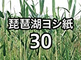 琵琶湖ヨシ紙30 250μ A4判 50枚
