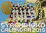 チームしゃちほこ PHOTO カレンダーBOOK2015 ([カレンダー])