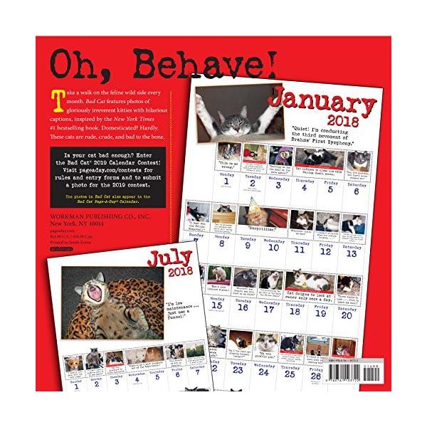 Bad Cat 2018 Calendarの紹介画像2