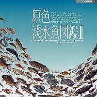 原色 淡水魚図鑑Ⅱ 16種(シークレット3種なし・台座:無彩色)