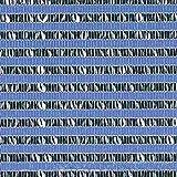【1本】 2m × 50m 銀×黒 遮光率50〜55% ダイオミラー 遮光ネット 50HB-6 寒冷紗 ダイオ化成 タ種 代不