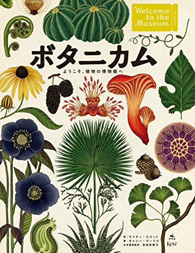 ボタニカム ようこそ、植物の博物館へ